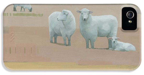 Sheep iPhone 5s Case - Life Between Seams by Steve Mitchell