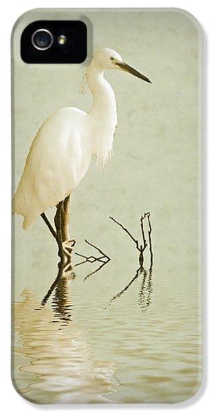 Little Egret IPhone 5s Case by Sharon Lisa Clarke
