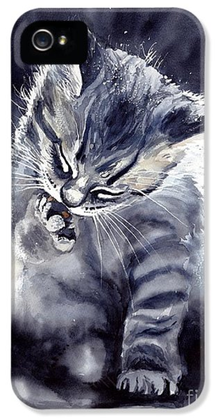 Fairy iPhone 5s Case - Little Grey Cat by Suzann's Art