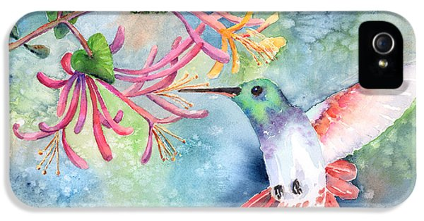 Humming Bird iPhone 5s Case - Little Hummingbird by Arline Wagner