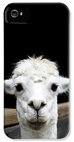 Llama IPhone 5s Case