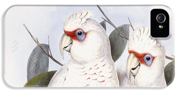 Cockatoo iPhone 5s Case - Long-billed Cockatoo by John Gould