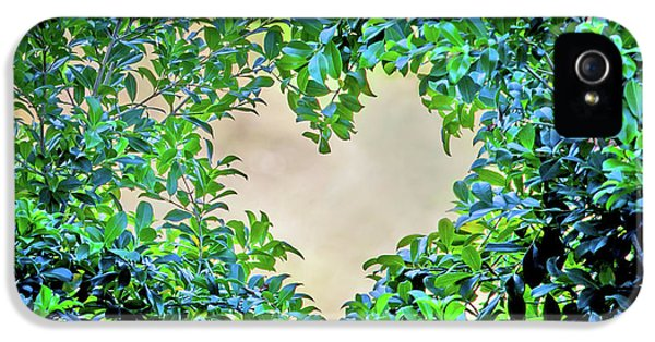 Featured Images iPhone 5s Case - Love Leaves by Az Jackson