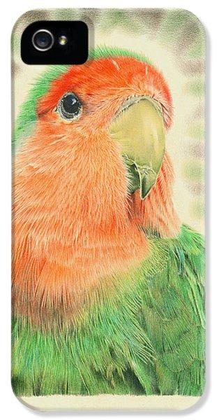 Lovebird iPhone 5s Case - Lovebird Pilaf by Remrov