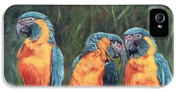 Macaws IPhone 5s Case by David Stribbling