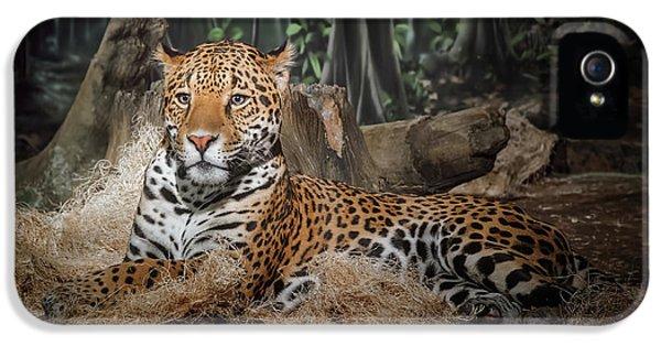 Leopard iPhone 5s Case - Majestic Leopard by Scott Norris
