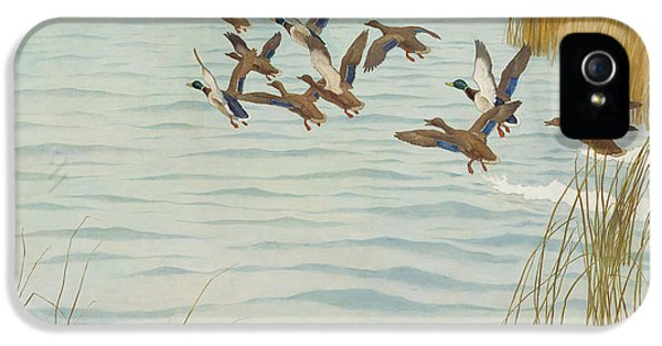 Mallards In Autumn IPhone 5s Case by Newell Convers Wyeth