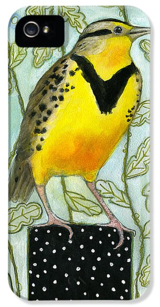 Meadowlark Black Dot Box IPhone 5s Case by Blenda Tyvoll