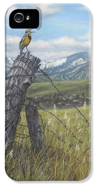 Meadowlark Serenade IPhone 5s Case by Kim Lockman
