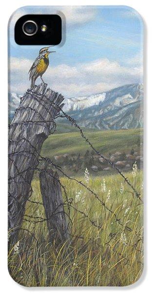 Meadowlark Serenade IPhone 5s Case by Kim Lockman