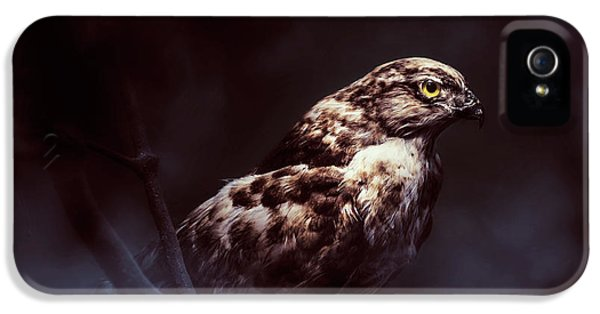 Hawk iPhone 5s Case - Midnight Hawk by Jorgo Photography - Wall Art Gallery
