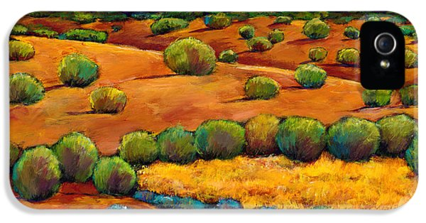 Desert iPhone 5s Case - Midnight Sagebrush by Johnathan Harris
