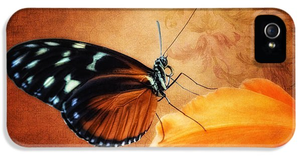Monarch Butterfly On An Orchid Petal IPhone 5s Case