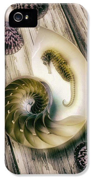 Moody Seahorse IPhone 5s Case by Garry Gay