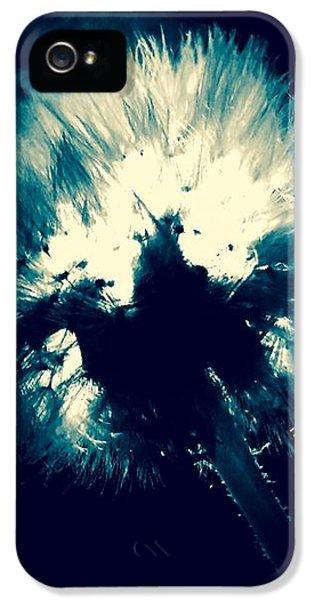 iPhone 5s Case - Moth Man by Orphelia Aristal
