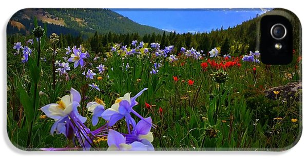 Mountain Wildflowers IPhone 5s Case by Karen Shackles