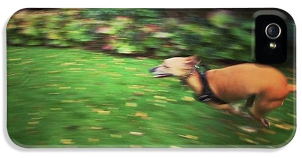 iPhone 5s Case - Mr Finly Enjoying A Few Rapid Laps Of by John Edwards