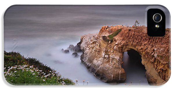 Seagull iPhone 5s Case - Mystical Cave by Larry Marshall