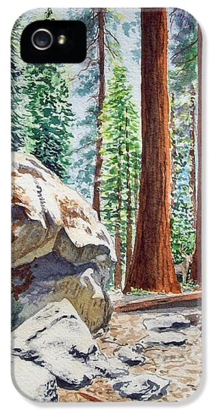 National Park Sequoia IPhone 5s Case