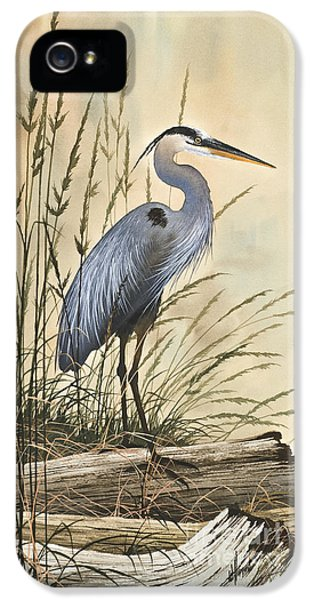 Nature's Harmony IPhone 5s Case by James Williamson