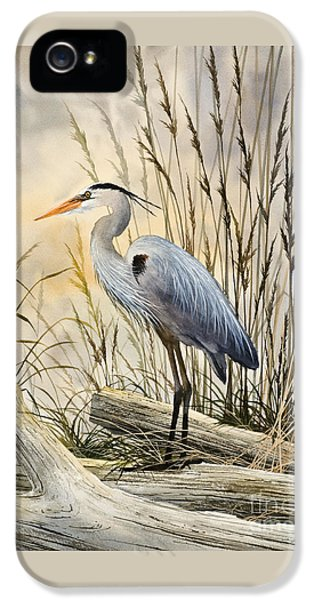 Birds iPhone 5s Case - Nature's Wonder by James Williamson