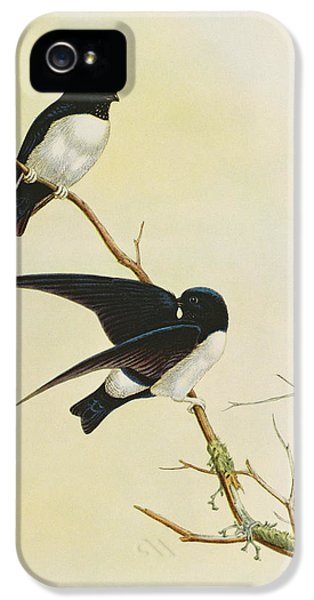 Nepal House Martin IPhone 5s Case