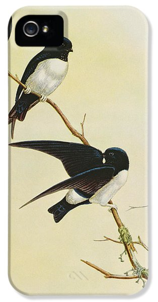Nepal House Martin IPhone 5s Case by John Gould