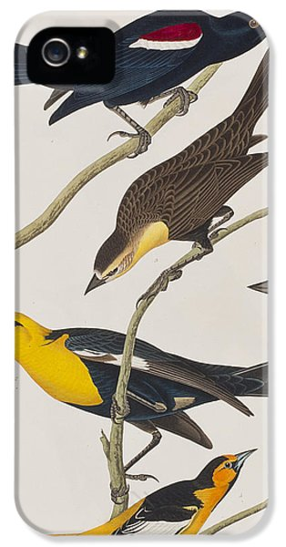 Nuttall's Starling Yellow-headed Troopial Bullock's Oriole IPhone 5s Case by John James Audubon