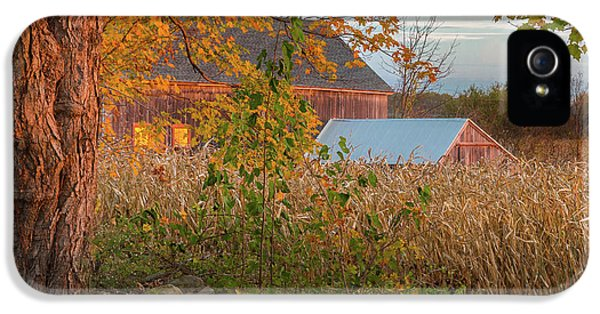 IPhone 5s Case featuring the photograph October Morning 2016 Square by Bill Wakeley
