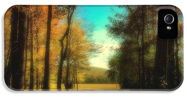 October Path IPhone 5s Case by Steven Gordon