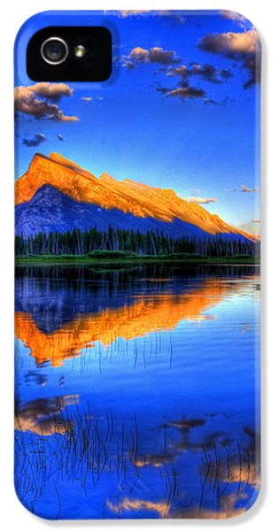 Goose iPhone 5s Case - Of Geese And Gods by Scott Mahon