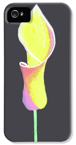 Oh Lily IPhone 5s Case by Cyrionna The Cyerial Artist