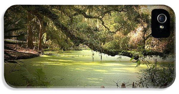 On Swamp's Edge IPhone 5s Case