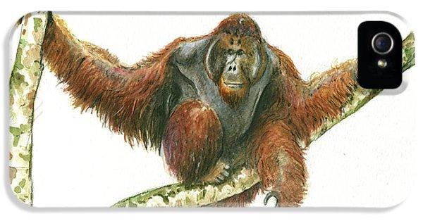 Orangutang IPhone 5s Case by Juan Bosco