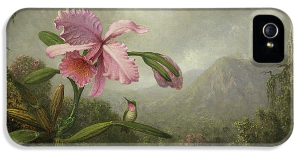 Humming Bird iPhone 5s Case - Orchid And Hummingbird Near A Waterfall by Martin Johnson Heade