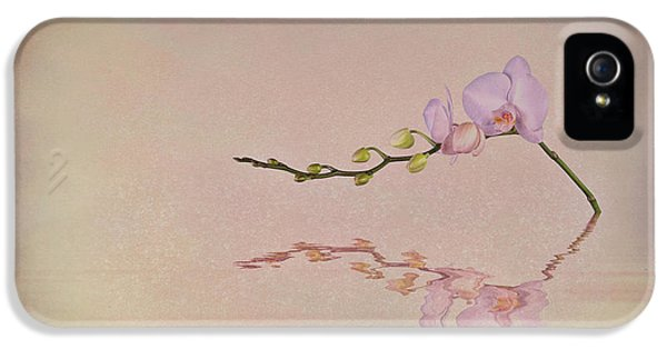 Orchid Blooms And Buds IPhone 5s Case by Tom Mc Nemar