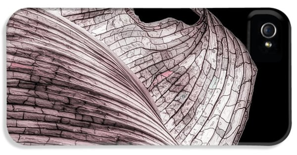 Orchid iPhone 5s Case - Orchid Leaf Macro by Tom Mc Nemar