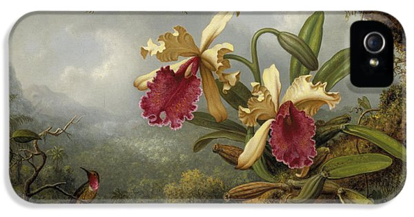 Humming Bird iPhone 5s Case - Orchids And Hummingbird by Martin Johnson Heade