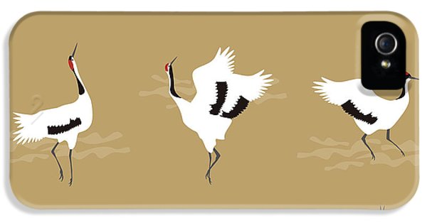 Oriental Cranes IPhone 5s Case