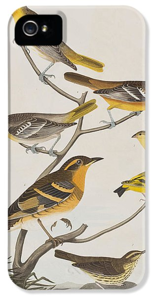 Orioles Thrushes And Goldfinches IPhone 5s Case