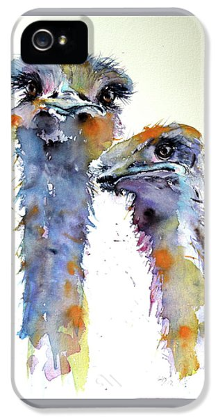 Ostrich iPhone 5s Case - Ostriches by Kovacs Anna Brigitta