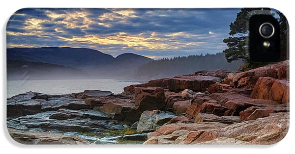 Otter Cove In The Mist IPhone 5s Case