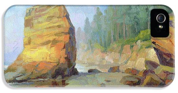Otter Rock Beach IPhone 5s Case