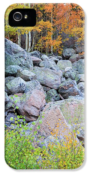 Painted Rocks IPhone 5s Case
