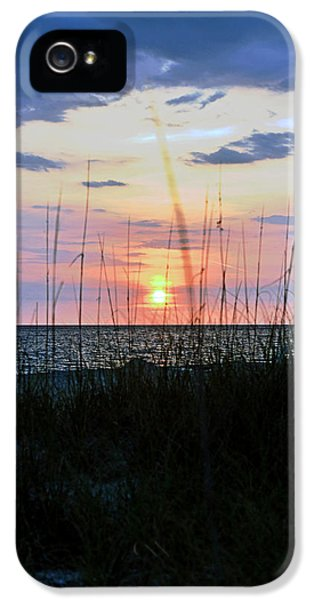 IPhone 5s Case featuring the photograph Palm Island II by Anthony Baatz