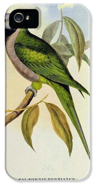 Parakeet IPhone 5s Case by John Gould