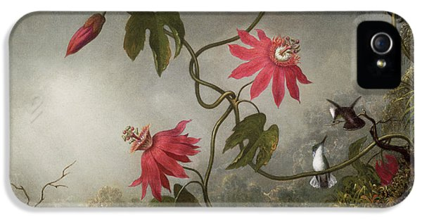 Humming Bird iPhone 5s Case - Passion Flowers And Hummingbird by Martin Johnson Heade