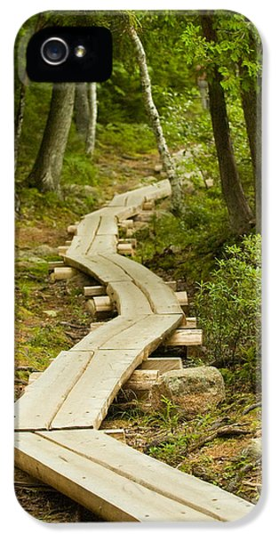 Path Into Unknown IPhone 5s Case