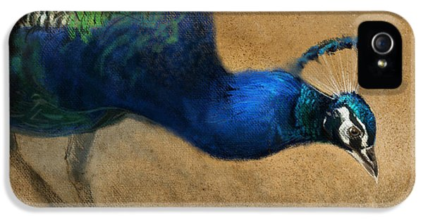Peacock iPhone 5s Case - Peacock Light by Aaron Blaise