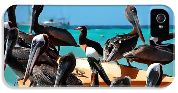 Pelicans On A Boat IPhone 5s Case by Bibi Romer